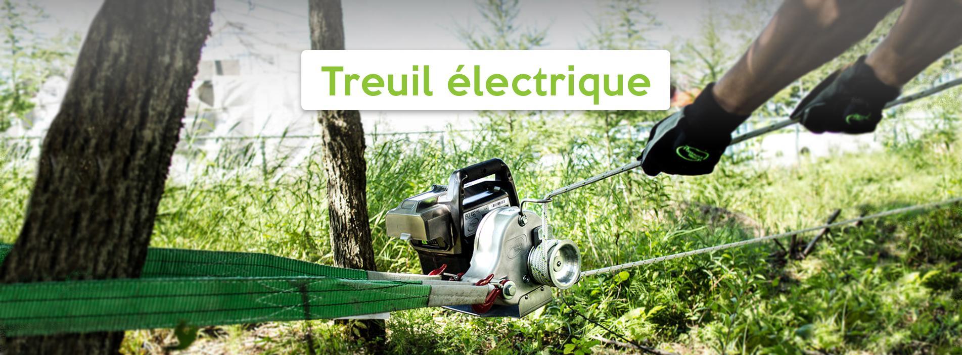 Treuil électrique